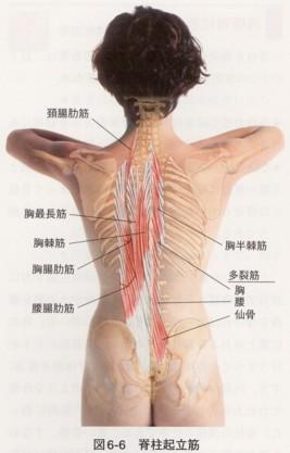 ぎっくり腰が荻窪でも流行っています。前かがみになれないぎっくり腰の症例