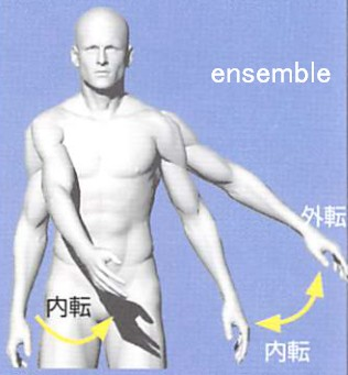横にあげた腕を下げる。さらに身体の内側に動かす(内転・外転)