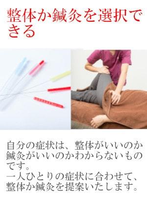 整体か鍼灸を選択できる